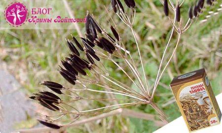 Семена тмина— польза для здоровья, сияющей кожи и великолепных волос
