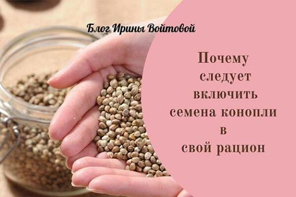 7 удивительно полезных свойств семян конопли