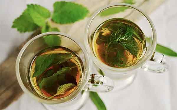 herbal-tea-ot-prostudi