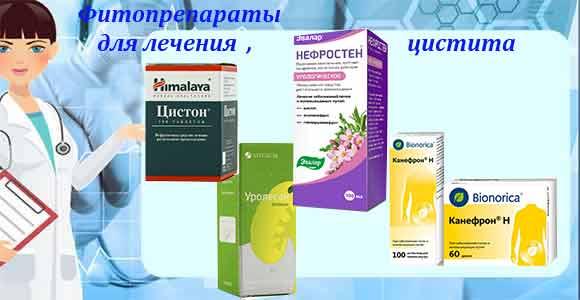 Фитопрепараты для лечения цистита