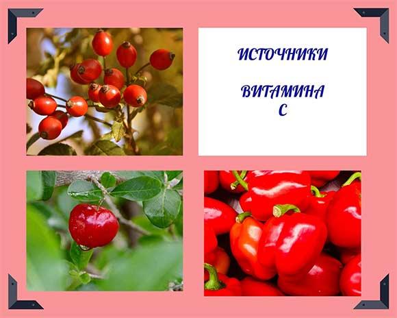 лучшие-источники-витамина-С