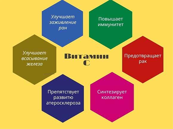 функции-аскорбиновой-кислоты-в-организме